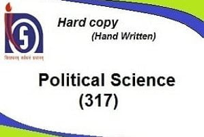 political science 317